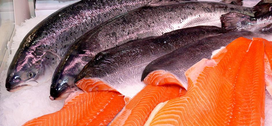 Seafood Markets Research & Development
